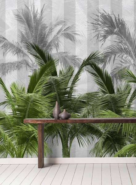 Palms spring - wallpaper