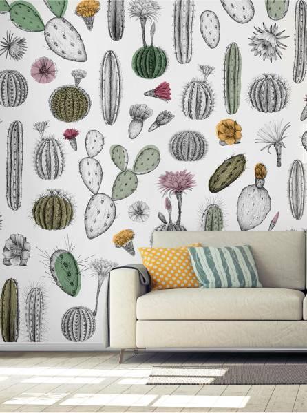 Cactofilia - wallpaper