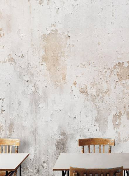 Tempo Lento - wallpaper