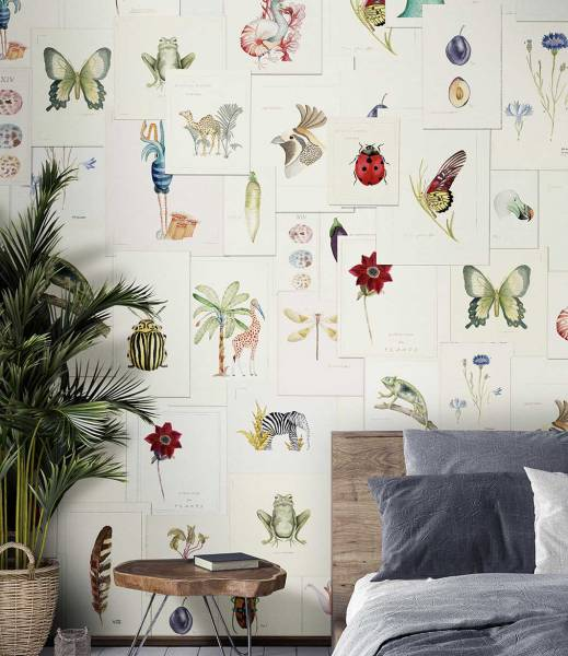 wallpaper - Pictionary