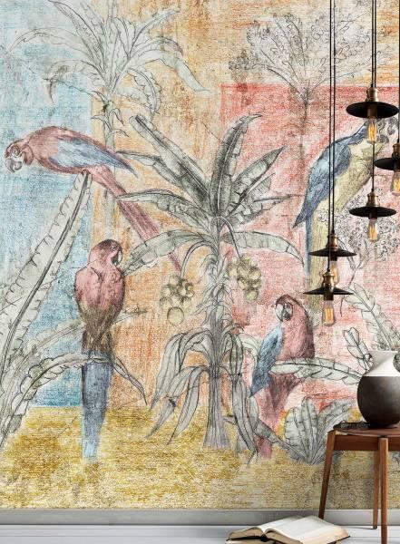 Amazzonia - wallpaper